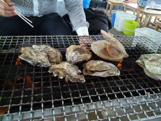 牡蠣だらけ